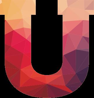IIM-icon