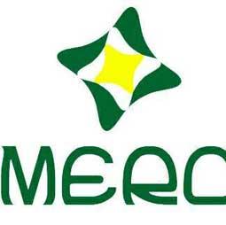 Merchandising and Retail Committee