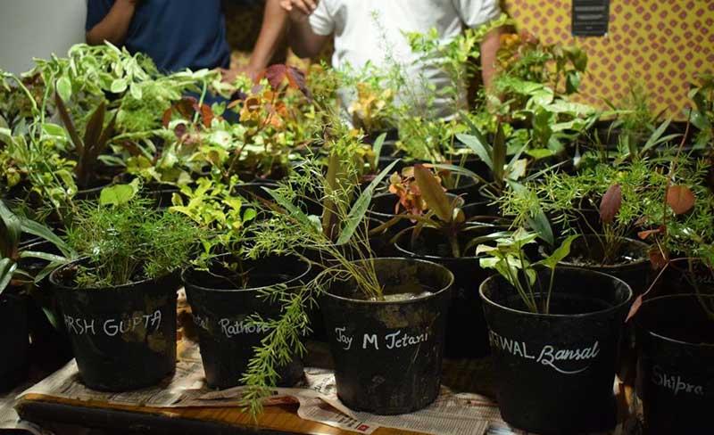 Plant Adoption Drive by Prayatna 2019